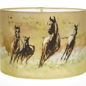 Freedom Field Lampshade